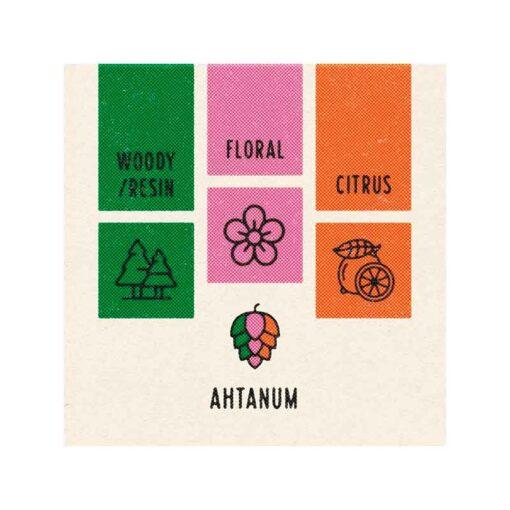 Ahtanum Hop Sensory Labs. 100g pellets