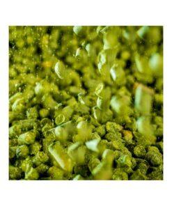 BRU-1 humle 100g. Aroma av ananas